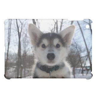 ハスキーな犬の子犬の屋外のポートレート iPad MINIケース