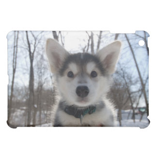ハスキーな犬の子犬の屋外のポートレート iPad MINI カバー