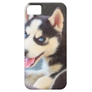 ハスキーなiPhone 5の場合 iPhone SE/5/5s ケース