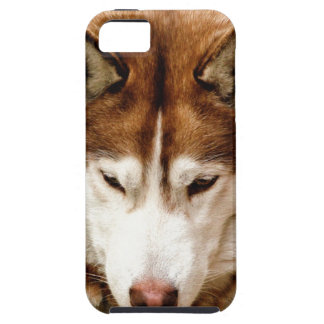 ハスキー iPhone SE/5/5s ケース