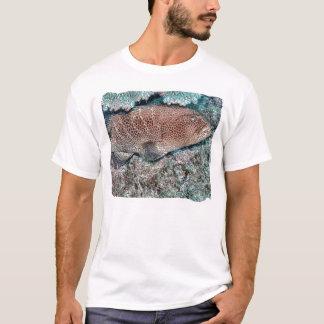 ハタの昼寝 Tシャツ