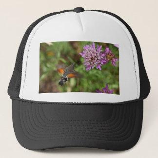ハチドリのタカガ(Macroglossumのstellatarum) キャップ