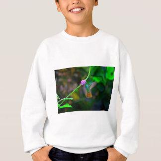 ハチドリの庭 スウェットシャツ