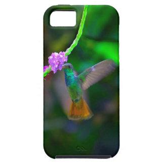 ハチドリの庭 iPhone SE/5/5s ケース