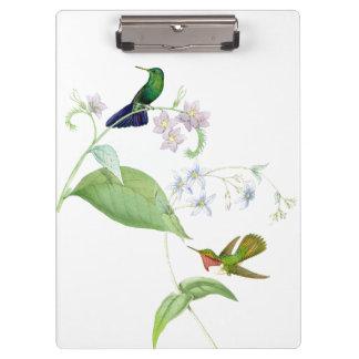 ハチドリの鳥の花の花の野性生物動物 クリップボード