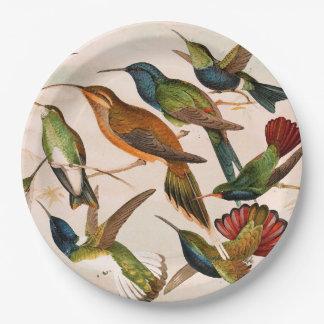 ハチドリの鳥動物の野性生物の紙皿 ペーパープレート