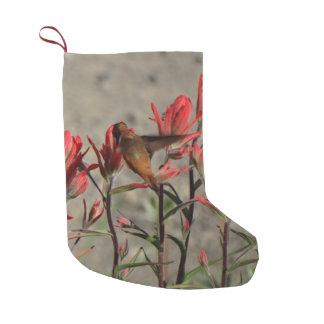 ハチドリの(鳥)ショウジョウコウカンチョウflw. スモールクリスマスストッキング