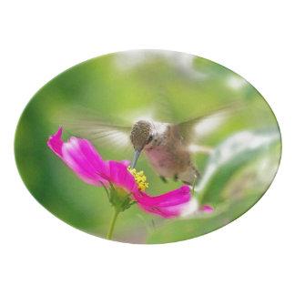 ハチドリ及びデイジーの花の花柄の配膳盆 磁器大皿