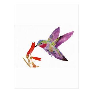 ハチドリ1 ポストカード