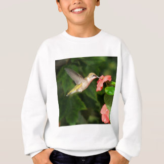 ハチドリ スウェットシャツ