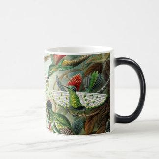 ハチドリ マジックマグカップ