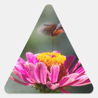 ハチドリ 三角形シール