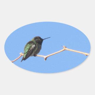 ハチドリ 楕円形シール