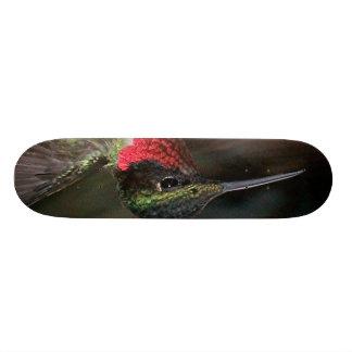 ハチドリ 21.6CM スケートボードデッキ