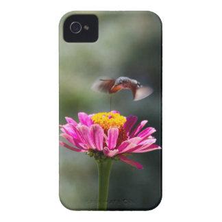 ハチドリ Case-Mate iPhone 4 ケース