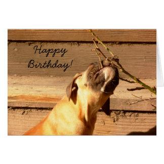 ハッピーバースデーのボクサーの子犬の挨拶状 グリーティングカード
