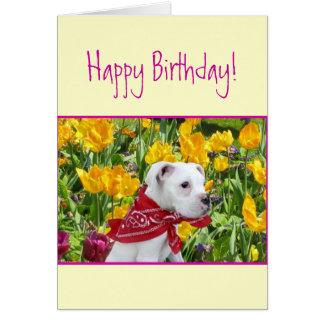 ハッピーバースデーの白いボクサーの子犬の挨拶状 グリーティングカード