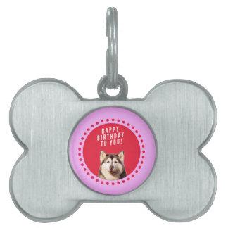 ハッピーバースデーを望んでいるかわいいシベリアンハスキー犬 ペットネームタグ