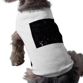ハッブルGOODS-ERS2によって明らかにされる銀河系の歴史 ペット服