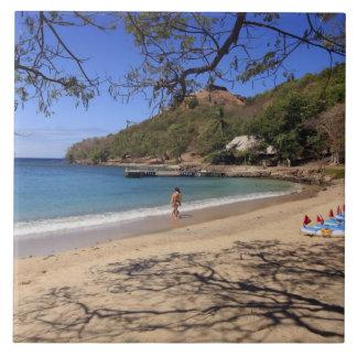 ハト島の国立公園のビーチ タイル