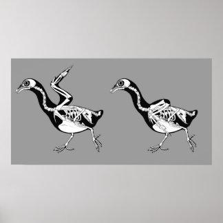 ハトSkeletalsのプリント ポスター