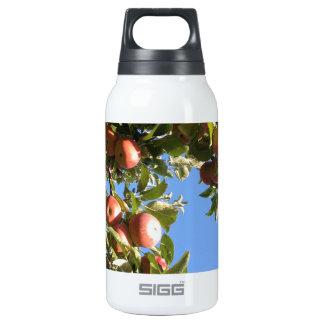 ハドソンの谷のりんご 断熱ウォーターボトル
