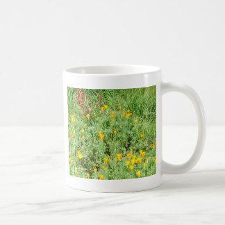 ハナビシソウ#4 コーヒーマグカップ