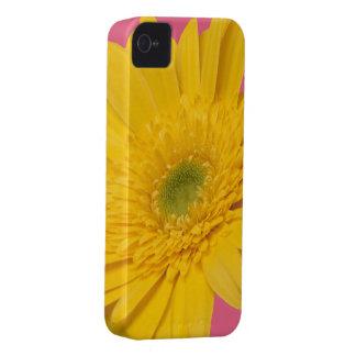 ハニーサックルのピンクの黄色い《植物》百日草の花柄 Case-Mate iPhone 4 ケース