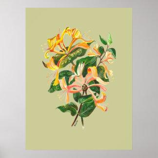ハニーサックルの花束 ポスター