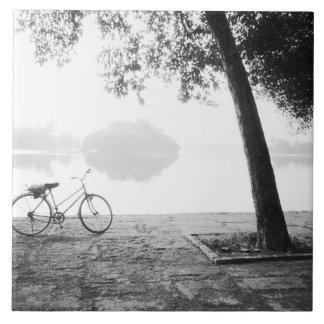 ハノイベトナム、自転車及び湾のMau湖のレーニン公園 正方形タイル大