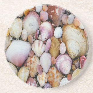 ハマグリの貝 コースター