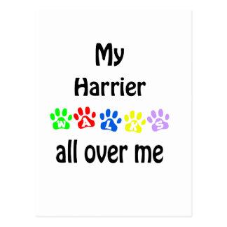 ハリアーの歩行のデザイン ポストカード
