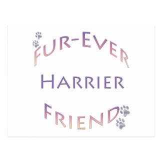 ハリアーFurever ポストカード