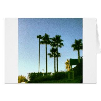ハリウッドの日没 カード