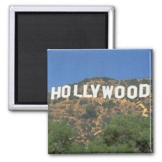 ハリウッドの磁石 マグネット