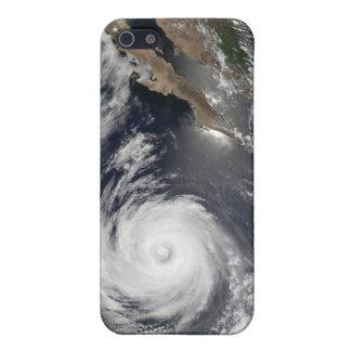 ハリケーンダグラス iPhone 5 COVER