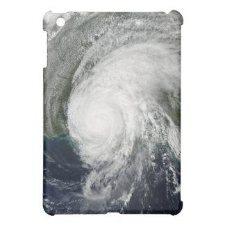 ハリケーンリリー3 iPad MINIケース