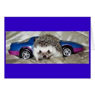 ハリネズミおよびレースカー カード