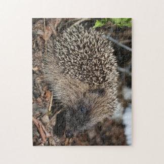 ハリネズミの写真のパズル ジグソーパズル