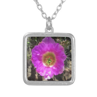 ハリネズミサボテンの花 シルバープレートネックレス