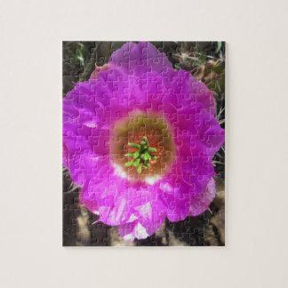 ハリネズミサボテンの花 ジグソーパズル