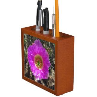 ハリネズミサボテンの花 ペンスタンド