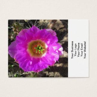 ハリネズミサボテンの花 名刺