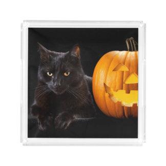 ハロウィンのカボチャおよび黒猫 アクリルトレー