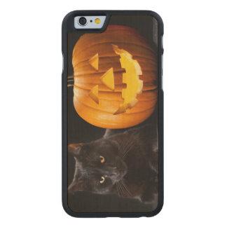 ハロウィンのカボチャおよび黒猫 ケース