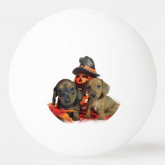 ハロウィンのダックスフントの子犬 卓球ボール