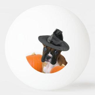 ハロウィンのボクサーの子犬 卓球ボール