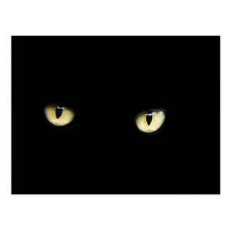 ハロウィンの黒猫は郵便はがきを注目します ポストカード