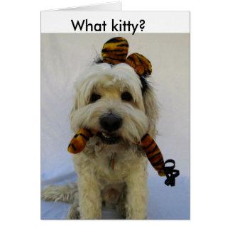 ハロウィンカード、ユーモア、犬は猫、罪がある犬を食べます、 カード