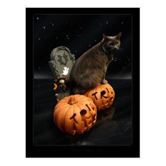 ハロウィン猫 葉書き